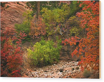 Zion Fall Colors Wood Print by Dave Dilli