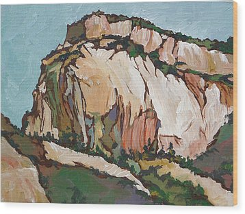 Zion National Park Wood Print by Sandy Tracey