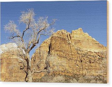 Zion Winter Sky Wood Print by Bob and Nancy Kendrick