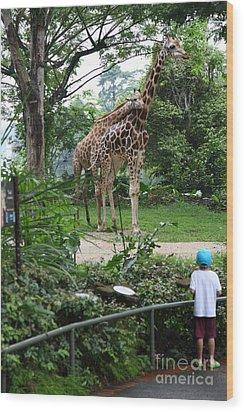 zoo Wood Print