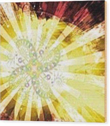 Cosmic Solar Flower Fern Flare 2 Wood Print by Shawn Dall
