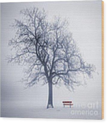Winter Tree In Fog Wood Print