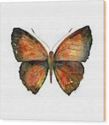 56 Copper Jewel Butterfly Wood Print by Amy Kirkpatrick