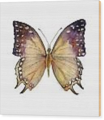 63 Great Nawab Butterfly Wood Print
