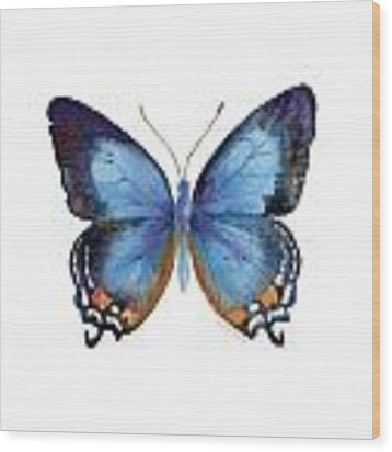 80 Imperial Blue Butterfly Wood Print by Amy Kirkpatrick