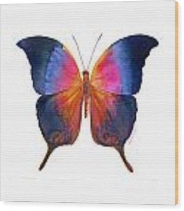 96 Brushfoot Butterfly Wood Print by Amy Kirkpatrick