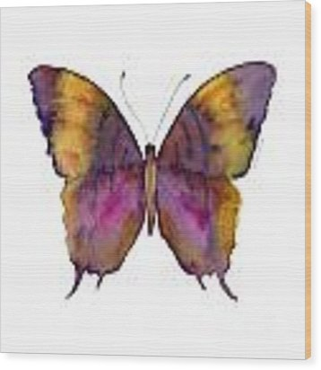 99 Marcella Daggerwing Butterfly Wood Print by Amy Kirkpatrick
