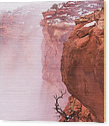 Atop Canyonlands Wood Print by Chad Dutson