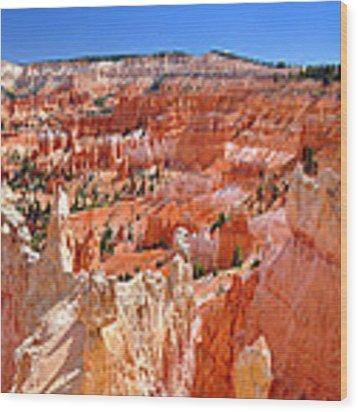 Bryce Canyon Utah Wood Print by Matthew Chapman