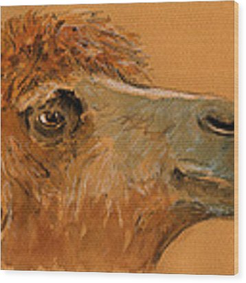 Camel Head Study Wood Print