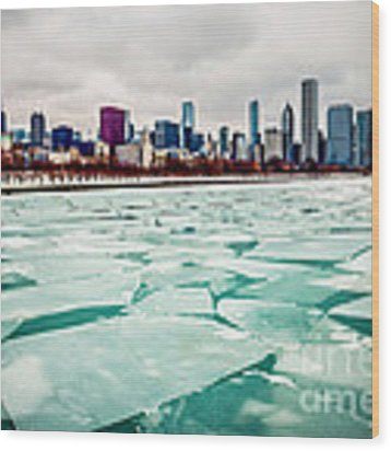 Chicago Winter Skyline Wood Print by Paul Velgos
