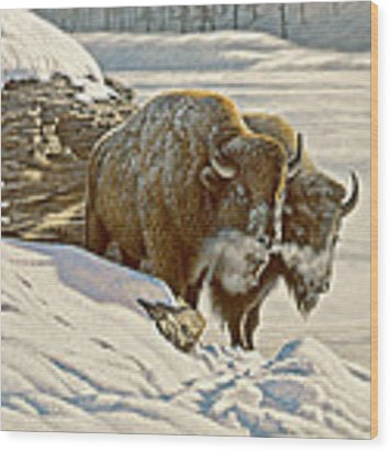 'cold Day At Soda Butte' Wood Print
