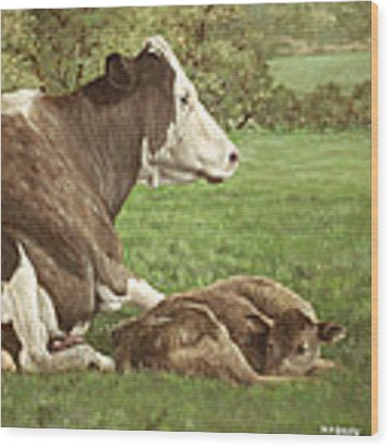 Cow And Calf In Field Wood Print