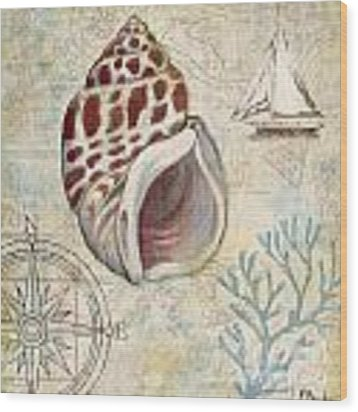 Discovery Shell Iv Wood Print