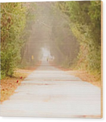 Dreamwalking Wood Print by Francis Trudeau