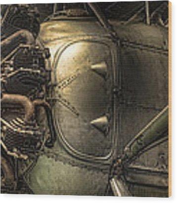 Radial Engine And Fuselage Detail - Radial Engine Aluminum Fuselage Vintage Aircraft Wood Print by Gary Heller
