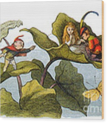 Fairy Courtship Cut Short Wood Print by Photo Researchers