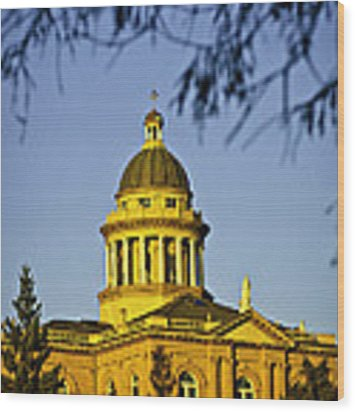 Historic Auburn Courthouse 5 Wood Print by Sherri Meyer