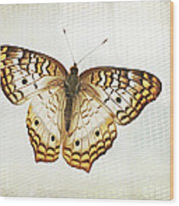 Illuminated Wings Wood Print by Lupen  Grainne