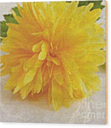 Kerria Japonica Wood Print by Vix Edwards