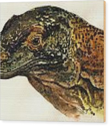 Komodo Monitor Wood Print
