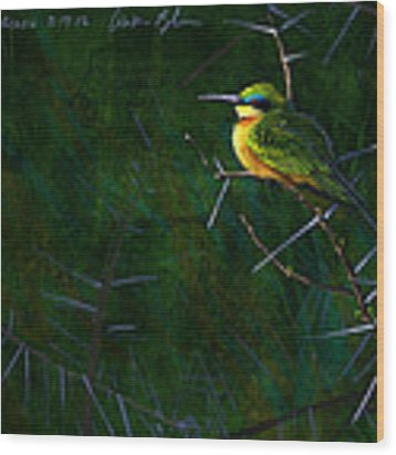 Little Bee Eater Wood Print by Aaron Blaise
