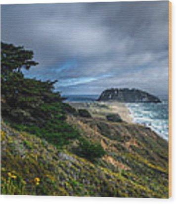 Looking Towards The Big Rock At Big Sur Wood Print by Gavin Baker