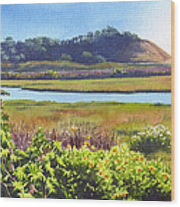 Los Penasquitos Creek Torrey Pines Wood Print by Mary Helmreich