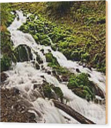 Mossy River Flowing. Wood Print
