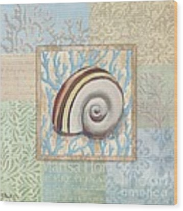 Oceanic Shell Collage Iv Wood Print