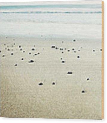 Peaceful Beach Wood Print by Lupen  Grainne