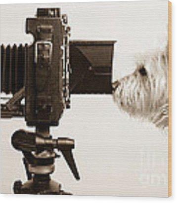 Pho Dog Grapher Wood Print by Edward Fielding