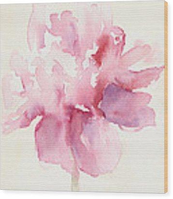 Pink Peony Watercolor Paintings Of Flowers Wood Print by Beverly Brown