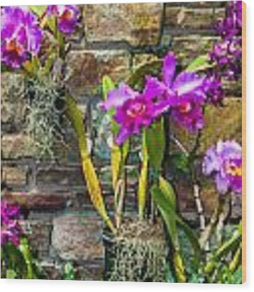 Purple Orchids With Cultured Stone Background Wood Print by Alex Grichenko