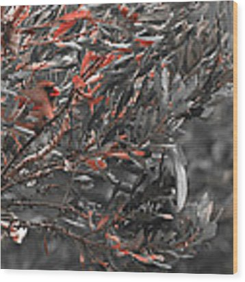 Red Camo Wood Print by Francis Trudeau