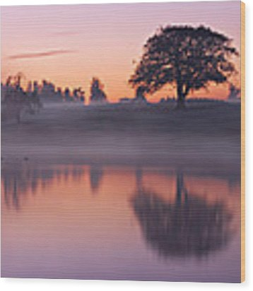 Reflections In A Lake At Dawn / Maynooth Wood Print by Barry O Carroll