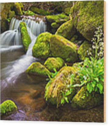 Roaring Fork Great Smoky Mountains National Park Tn Wood Print