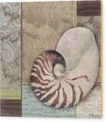 Santa Rosa Shell II Wood Print