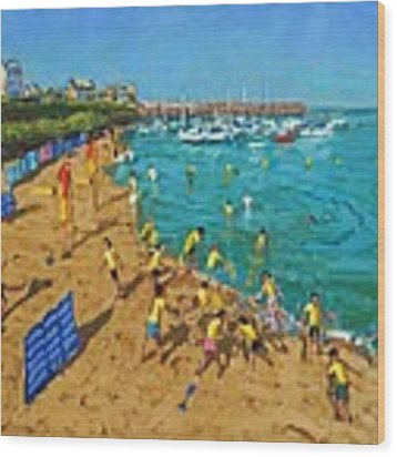 School Outing New Quay Wales Wood Print by Andrew Macara