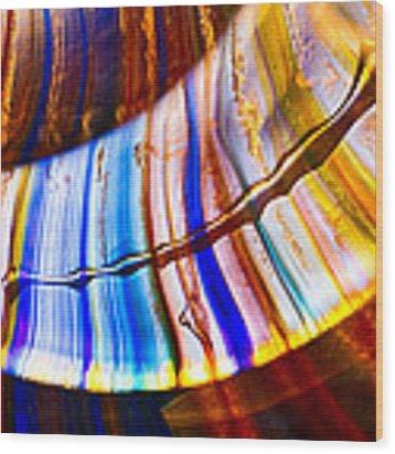 Scimitar Wood Print by Omaste Witkowski