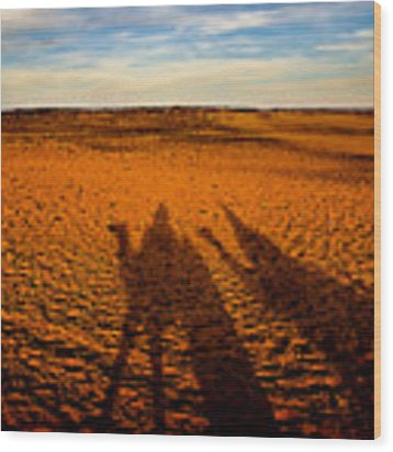Shadows On The Sahara Wood Print by Mark E Tisdale