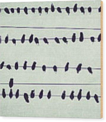 Simple Song Wood Print by Lupen  Grainne