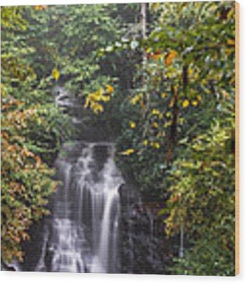 Soco Falls Wood Print by Francis Trudeau