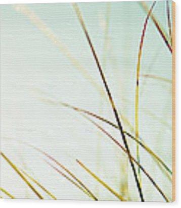 Teal Glow Wood Print by Lupen  Grainne