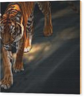 Torch Tiger 2 Wood Print by Aaron Blaise