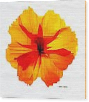 Yellow Hibiscus Wood Print by Rafael Salazar