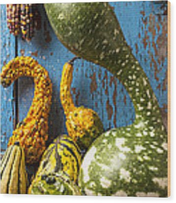 Autumn Gourds Wood Print by Garry Gay