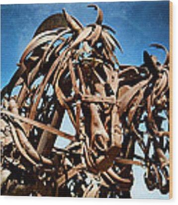 Iron Horse Wood Print by Matt Hanson