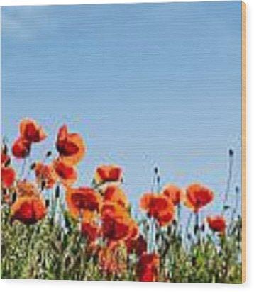 Poppy Flowers 01 Wood Print by Nailia Schwarz