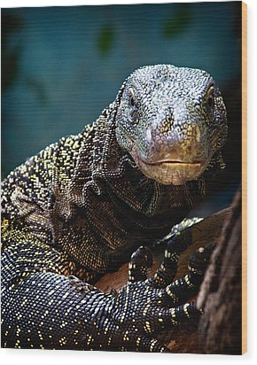 Wood Print featuring the photograph  A Crocodile Monitor Portrait by Lana Trussell